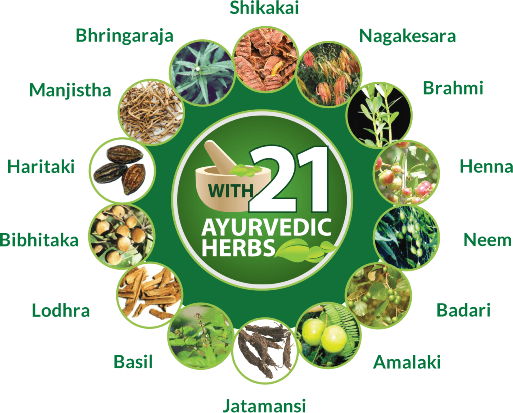 Ayurvedic Herbs for Hair loss