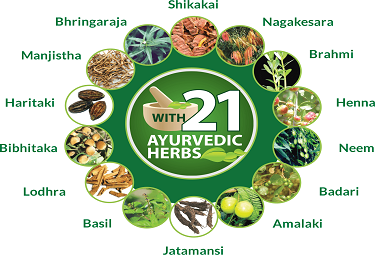 21 Ayurvedic Herbs For Hairfall